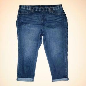 Terra & Sky Plus 1X Pull On Capri Stretch Jeans